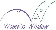 Wombs Window 3D Ultrasound North Carolina